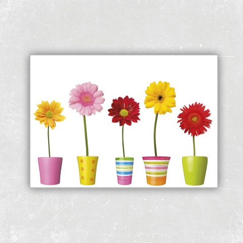 Blumenvielerlei